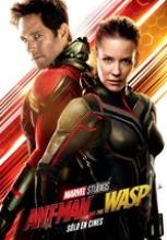 Karınca Adam ve Eşek Arısı – Ant-Man and the Wasp Sansürsüz Full İzle